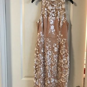 Taupe and white lace dress